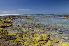 Берег океана во время прилива  Стоковое Фото