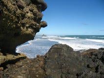 Берег океана Новой Зеландии Стоковые Фотографии RF