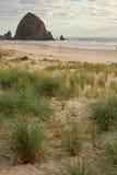 берег океана Стоковые Фото