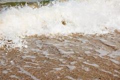 берег океана стоковое изображение rf