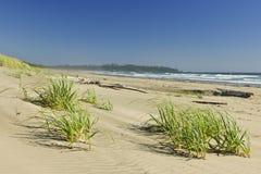 берег оправы парка национального океана Канады Тихий океан Стоковое Изображение