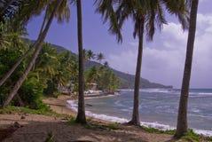 берег Пуерто Рико южный стоковые фото