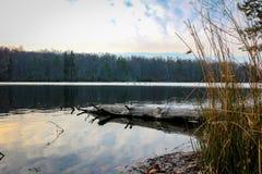 Берег резервуара Стоковое Изображение