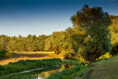 Берег реки в Венгрии Стоковое Фото