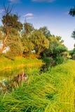 Берег реки в Венгрии Стоковая Фотография