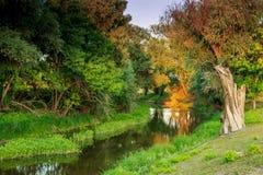 Берег реки в Венгрии Стоковая Фотография RF