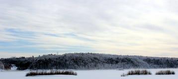 Берег реки в зиме Стоковое Фото