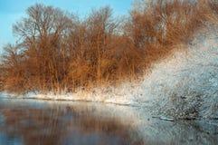 Берег реки в зиме Стоковые Изображения