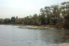 Берег реки в Angkor Wat, Siem Riep, Камбодже Стоковые Изображения