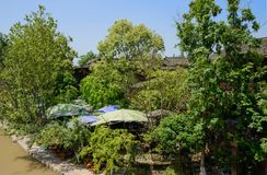 Берег реки плитк-настелил крышу дома в древесинах на солнечный летний день Стоковые Фотографии RF