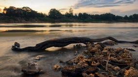 Берег реки пня съемки долгой выдержки Стоковые Изображения RF