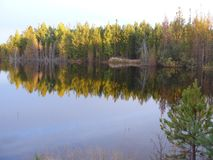 Берег реки Сибиря Angara стоковые фото