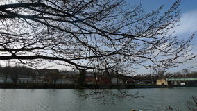 Берег реки с городком в backround Стоковое Изображение RF
