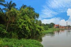 Берег реки Таиланд Стоковые Изображения RF