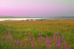 берег реки стоковое изображение rf