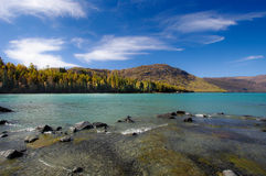 берег реки Стоковое Фото