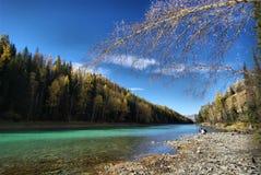 берег реки Стоковая Фотография RF