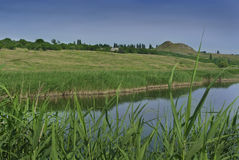 Берег реки Стоковые Фото