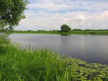берег реки Стоковые Фотографии RF