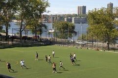 берег реки york парка города новое Стоковые Изображения RF