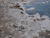 Берег соли на мертвом море Израиле Стоковое фото RF