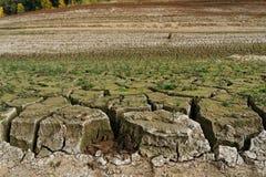 Берег сухого озера, земля прекращал в большие дрейфующие льды, небольшие заводы рос, засохлость ясно видим, стоковое изображение