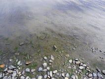 Берег с камешками и открытым морем стоковое изображение rf