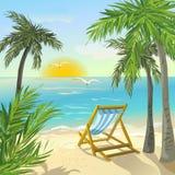 Берег с пальмами и восходом солнца Стоковые Изображения