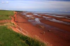 берег argyle Стоковые Фото