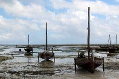 берег dhows Стоковая Фотография RF