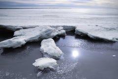 Берег Gulf of Finland в зиме в снеге в отражении воды солнца стоковые фотографии rf