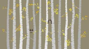 Береза вектора или деревья Aspen с листьями осени и птицами влюбленности Стоковое фото RF