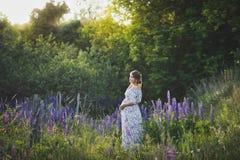 Беременная девушка идет до зацветая lupine поле 1676 стоковое изображение rf