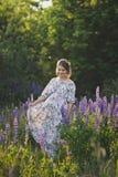 Беременная девушка идет до зацветая lupine поле 1681 стоковая фотография