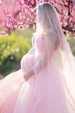 Беременная девушка невесты в саде персика цветения Стоковые Фотографии RF
