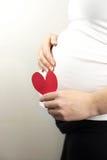 Беременная женщина держа в сердце красного цвета руки Нерождённый младенец в животе беременной женщины Стоковые Изображения