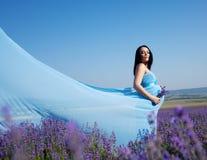 беременная женщина лаванды Стоковое Фото