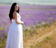 беременная женщина лаванды Стоковая Фотография RF