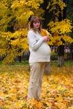 беременная женщина парка клена листьев владением осени Стоковое Изображение