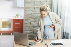Беременная женщина работая с компьтер-книжкой Стоковое Изображение