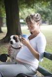 Беременная женщина сидя с собакой на скамейке в парке Стоковые Изображения RF