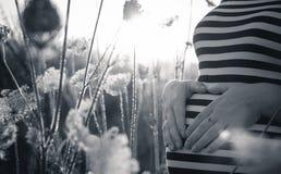 Беременная ждет меньшее солнце Стоковые Изображения RF
