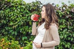 Беременная молодая женщина стоя на изгороди и выпивая от чашки женщина парка супоросая ослабляя Стоковая Фотография