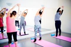 Беременные женщины делают тренировки фитнеса Стоковая Фотография