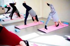 Беременные женщины делают тренировки фитнеса Стоковые Изображения