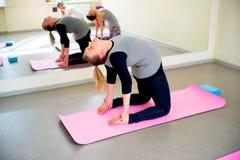Беременные женщины делают тренировки фитнеса Стоковое Изображение