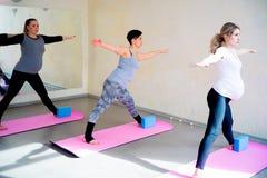 Беременные женщины делают тренировки фитнеса Стоковое фото RF