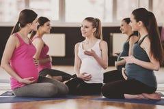 Беременные женщины на спортзале Стоковое Фото