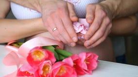 Беременные пары держа крошечные розовые носки childs в руках беременная женщина акции видеоматериалы