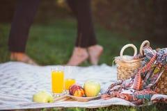 Беременные пары на пикнике Стоковое фото RF
